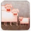 Pig 돼지