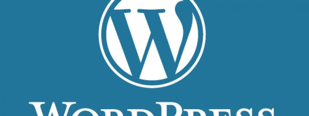 Free Guides That Really Teach You USEFUL Stuff For WordPress or more 워드프레스등과 관련하여 공짜로 사용할 수 있는 유용한 정보 모음집!